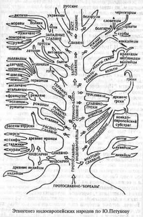 drevo etnogenez Petrov.jpg