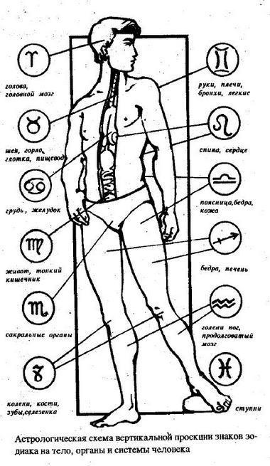 22 ноября метки на тепе знак зодиака женщина